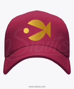 Gorra gravity falls Bill Stan